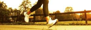 Fitness Organik Enerji Gıda Öğün Doğal